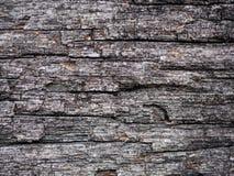 Viejo backgroud de madera de la textura Fotografía de archivo