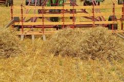 Viejo bucker restaurado para cosechar el grano Foto de archivo