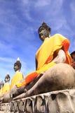 Viejo Buda en Ayuttaya Tailandia Fotos de archivo
