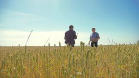 Viejo campo de trigo del hombre del verano de dos granjeros que corre en el pan del trigo del campo vídeo de la cámara lenta conc almacen de metraje de vídeo