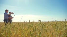 Viejo campo de trigo del hombre del verano de dos granjeros que corre en el pan del trigo del campo vídeo de la cámara lenta conc almacen de video