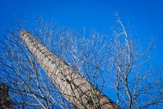 Viejo chimne de la fábrica Imagenes de archivo