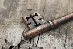 Viejo clave en el driftwood Imagen de archivo