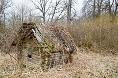 Viejo viejo dilapidado poca casa rota arruinada abandonada de madera del pueblo de haces, de registros y de palillos Fotografía de archivo libre de regalías