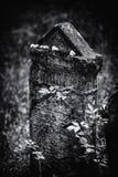 Viejo ejemplo judío abandonado de BW del cementerio ilustración del vector