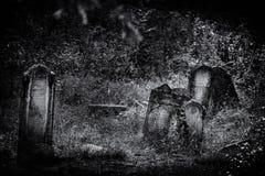 Viejo ejemplo judío abandonado de BW del cementerio stock de ilustración