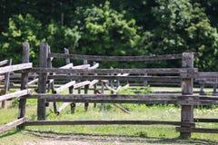 Viejo fense rural de madera del corral en prado Fotos de archivo libres de regalías