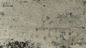 Viejo fondo agrietado de la textura de la pared con el musgo seco foto de archivo