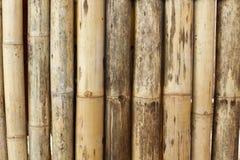 Viejo fondo de bambú Imagen de archivo