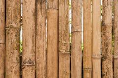 Viejo fondo de bambú de la cerca Fotos de archivo