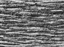 Viejo fondo de madera agrietado de la textura del grano Imagen de archivo