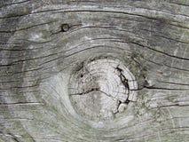 Viejo fondo de madera de la cerca Imágenes de archivo libres de regalías
