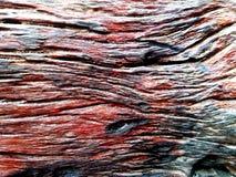 Viejo fondo de madera del primer de la textura del tablón Fotos de archivo