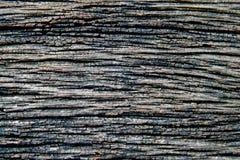 Viejo fondo de madera gris de la textura Imagen de archivo