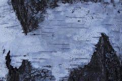 Viejo fondo de madera hermoso de la textura Fotografía de archivo