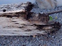 Viejo fondo de madera negro de la textura Foto de archivo