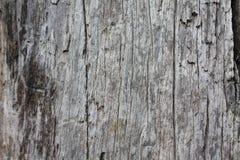 Viejo fondo de madera, textura de la madera de 100 a?os imagen de archivo