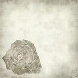 Viejo fondo de papel Textured Imagen de archivo