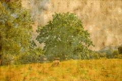 Viejo fondo de papel texturizado con el pastor y el árbol del paisaje Foto de archivo