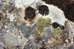 Viejo fondo de piedra Foto de archivo