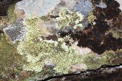 Viejo fondo de piedra Imagenes de archivo