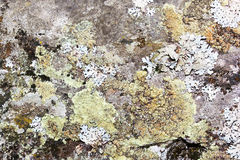 Viejo fondo de piedra Foto de archivo libre de regalías