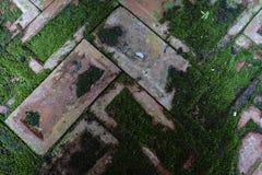 Viejo fondo del piso de los ladrillos Fotografía de archivo