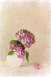 Viejo fondo texturizado de la flor Imagen de archivo