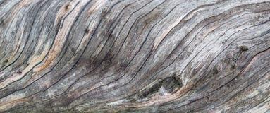 Viejo fragmento de madera de la textura Fotos de archivo