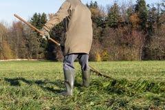 viejo granjero que rastrilla la hierba fotografía de archivo