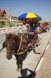 Viejo hombre alemán que presenta con el carro traído por caballo antes de arou del viaje Imagenes de archivo