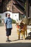 Viejo hombre alemán que presenta con la estatua de la vaca en Wat Phra That Lampang L Fotos de archivo