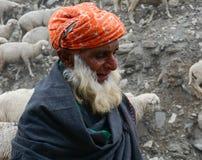 Viejo hombre con las ovejas en el camino de la montaña en Kargil, la India Fotos de archivo libres de regalías
