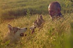 Viejo hombre con su perro en un campo en la puesta del sol Imagen de archivo libre de regalías