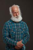 Viejo hombre con una sonrisa grande del wiith largo de la barba Imágenes de archivo libres de regalías