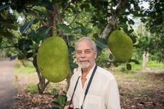Viejo hombre del primer contra Jackfruits grandes en árbol en Gargen Imágenes de archivo libres de regalías