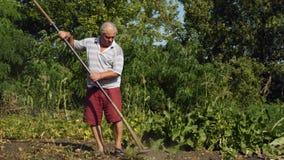 Viejo hombre, mala hierba de cosecha residente del pueblo en el jardín con la ayuda de la grava almacen de video