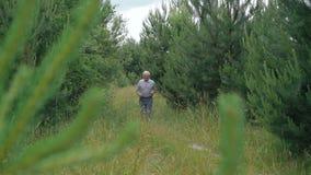 Viejo hombre que activa al aire libre en una naturaleza conífera del bosque almacen de metraje de vídeo