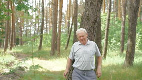 Viejo hombre que corre al aire libre en una naturaleza conífera del bosque metrajes