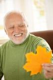 Viejo hombre sonriente que mira la hoja amarilla fotos de archivo libres de regalías