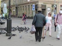 Viejo hombre y palomas de la desigualdad imagen de archivo