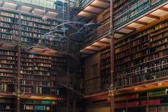 Viejo interior de la biblioteca en Rijsmuseum en la ciudad de Amsterdam, Holanda foto de archivo libre de regalías