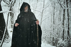 Viejo mago en el bosque blanco imágenes de archivo libres de regalías