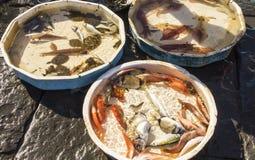 Viejo mercado tradicional de pescados frescos Fotos de archivo