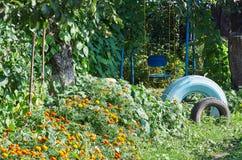 Viejo oscilación entre las flores en un jardín con los neumáticos pintados Fotografía de archivo libre de regalías