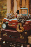 Viejo paisaje de la maleta al aire libre Foto de archivo