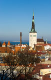 Viejo panorama de Tallinn Fotos de archivo