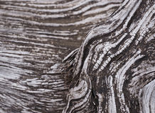 Viejo pedazo de madera de deriva Imágenes de archivo libres de regalías