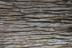 Viejo pedazo mismo de madera de envejecimiento con textura natural profunda de la grieta fotografía de archivo libre de regalías
