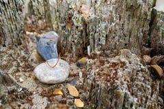 Viejo poste resistido de la playa Foto de archivo libre de regalías